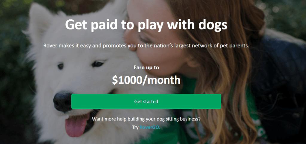 遛狗也能做生意