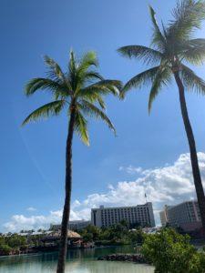 巴哈馬-美國最適合親子旅遊的地方